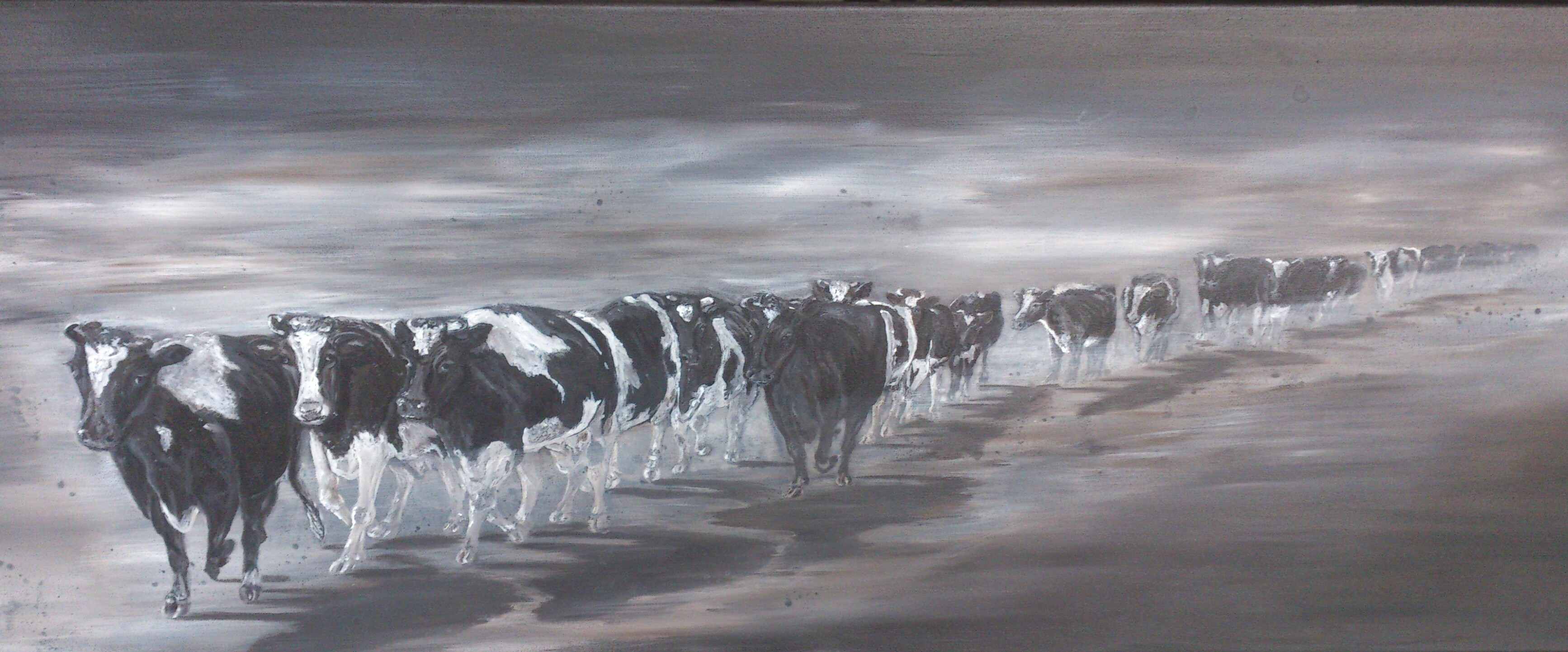 Koeien lopen naar de stal