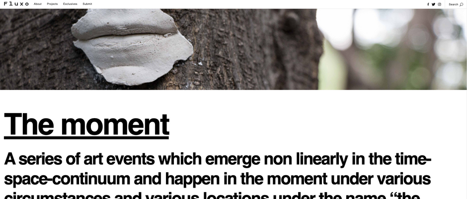 The moment/echosystem @ofluxo
