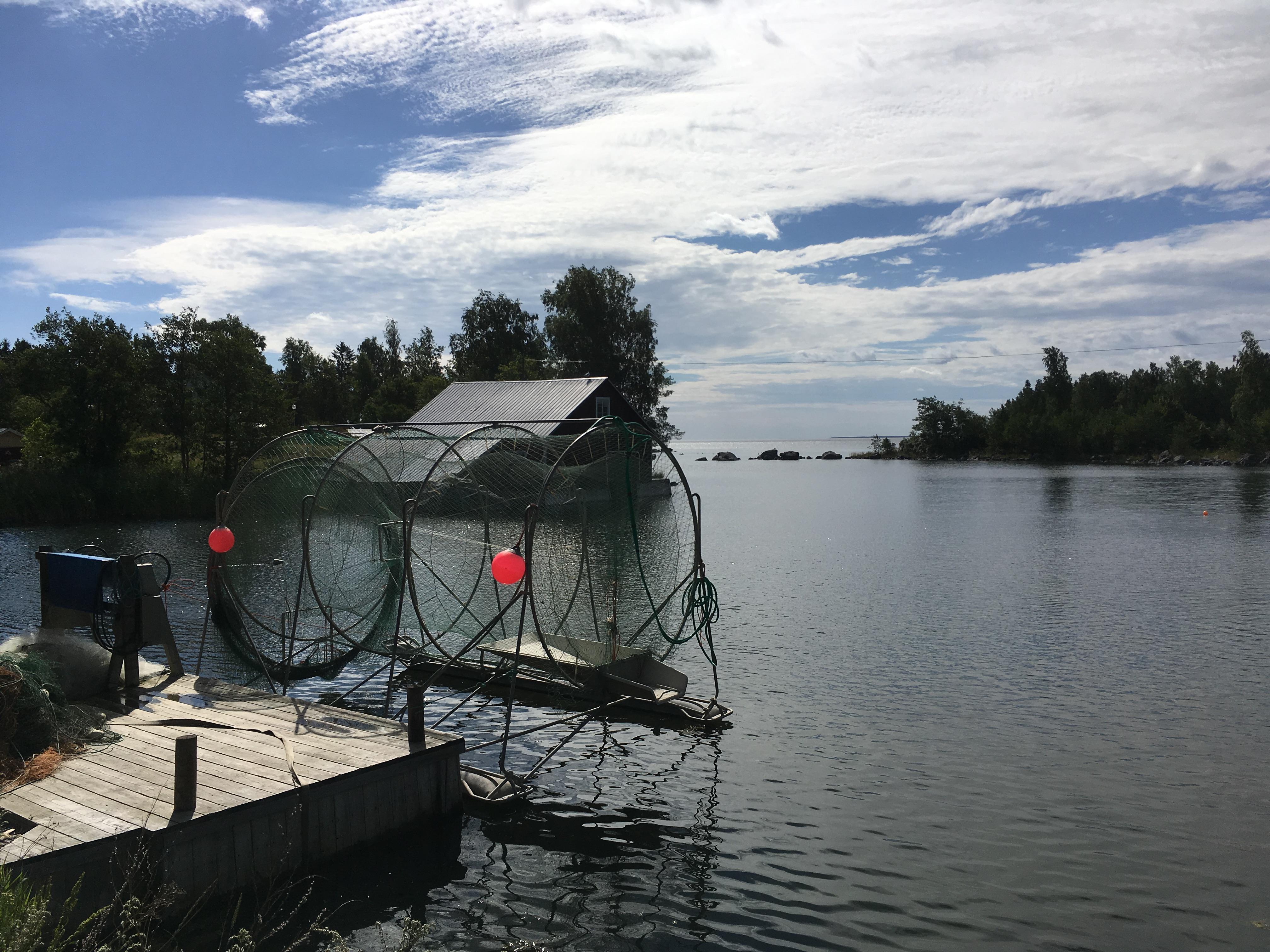 Hedenstugan - Gåsholma