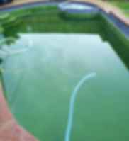 POOL CLEANING - Waterfalls Pool Services