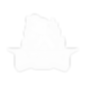 shapeshift white_logo.png