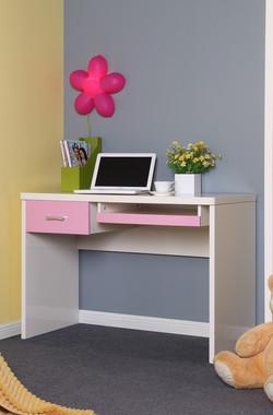 6113H-desk