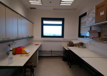 Neta Shlezinger lab 4.JPG