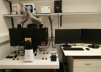 Neta Shlezinger lab 3.jpg