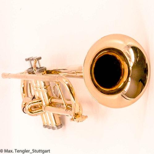 [282] Trompete in Bb von Stomvi Mambo Titanium vergoldet 9911126