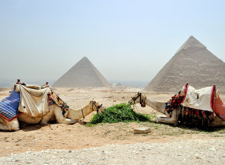 Cairo blog 3 - Articulations, mistakes and metaphor