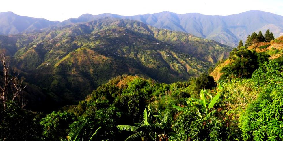 Blue Mountains 3500 feet up.JPG