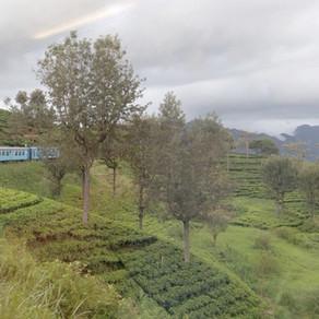 Sri Lanka by train