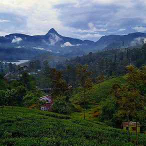 Top 10 things you absolutely MUST do in Sri Lanka