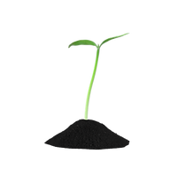 Young Plant Sprout.I14.2k.png