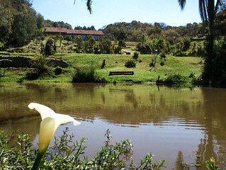 Nasce mais uma Reserva Particular no Paraná