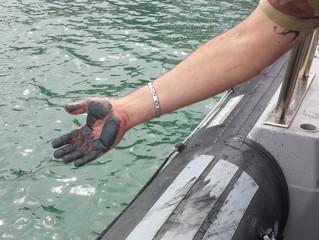 Porto de Tubarão é interditado para investigação de danos ambientais