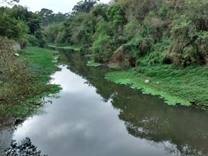 DAEE aguarda licença ambiental para iniciar desassoreamento do Tietê