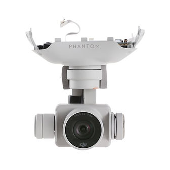 DJI Phantom 4 Professional NDVI camera