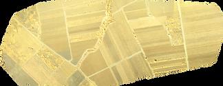 NIR field map