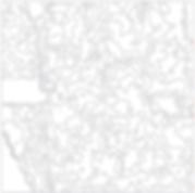 NDVI zonemap (vectorgraphic)