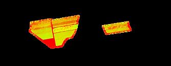 NDVI field map