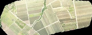RGB field map