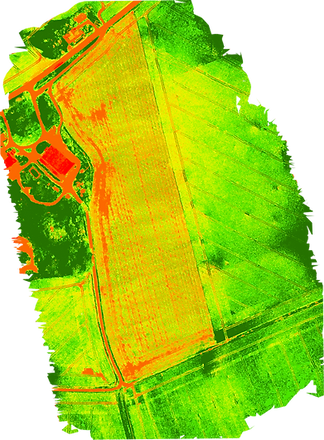 ndvi_colormap.png