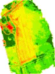 ndvi_zones.png