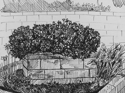 Inktober 2020 - Flower Bush