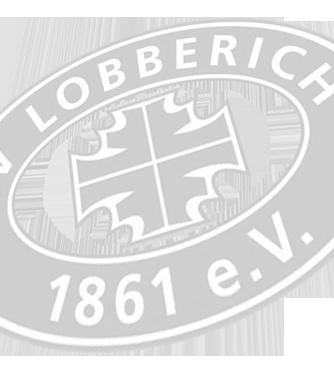 TV Logo grau transparent_schraeg.png