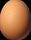 Poule pondeuse