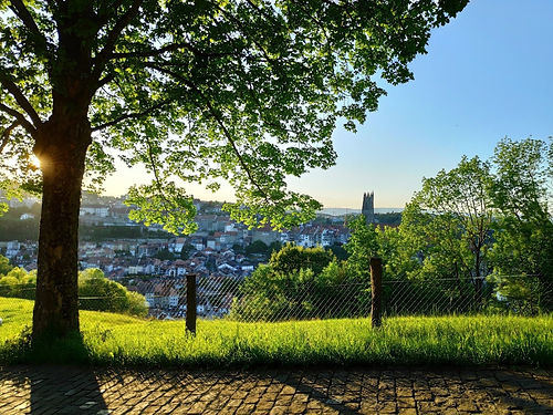 Fribourg_Nature.jpg