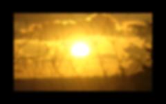 Sunlime Art Film