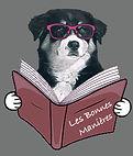 Education chien toutes races l'oise et val d'oise