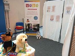 Prévention morsures peccram éducateur canin éducation chien Oise Val d'Oise