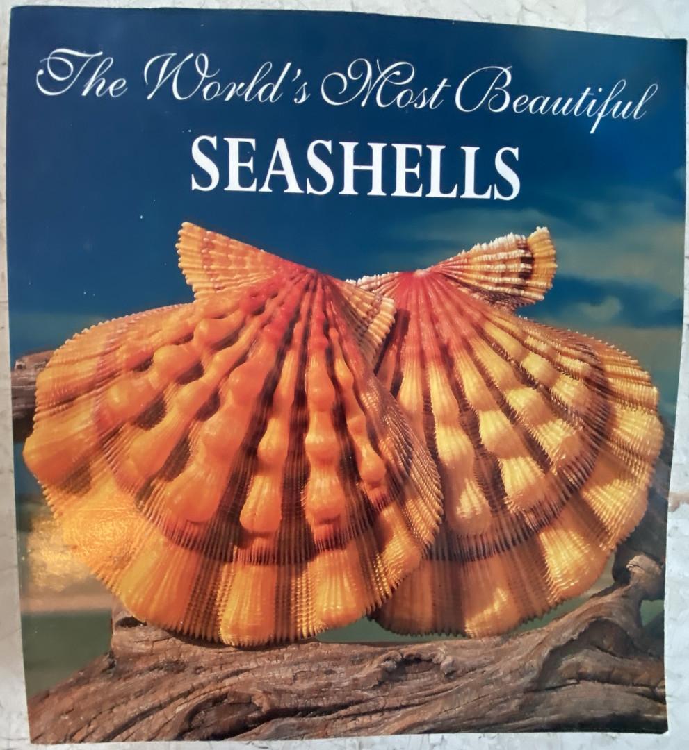 Seashell book