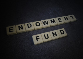 Is the donor-led pure restricted endowment really helping?