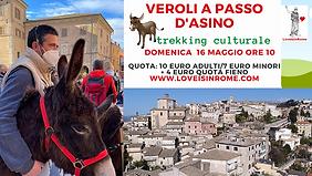 Trekking con asini Veroli.png