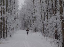 deere-snow
