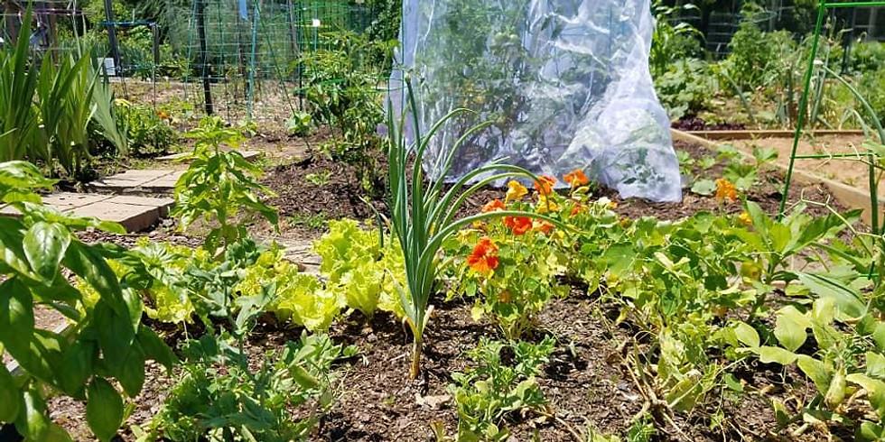Welch Community Garden
