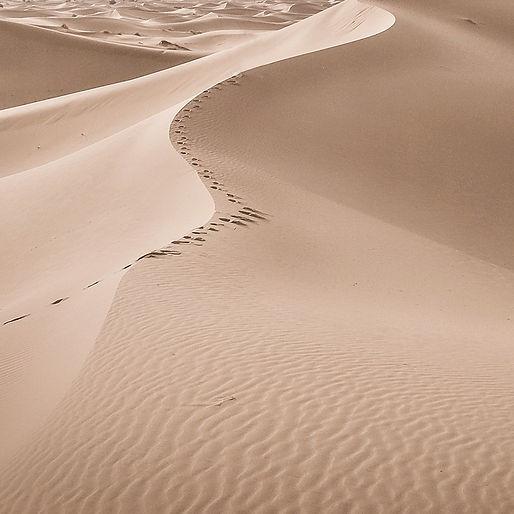 Sand%20Dune%20_edited.jpg