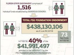Florida State University Endowment Report