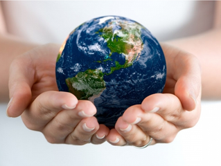 «Экологические проблемы человечества - в поисках решения»