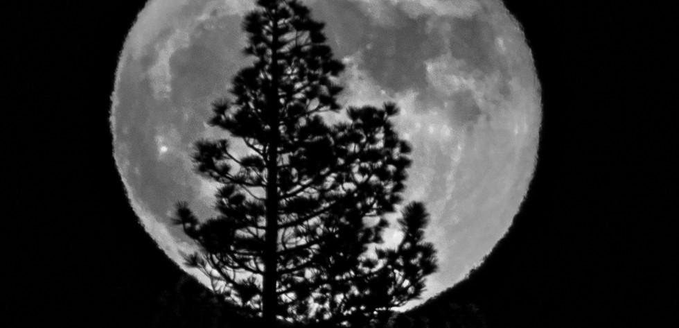 Super Moon B&W