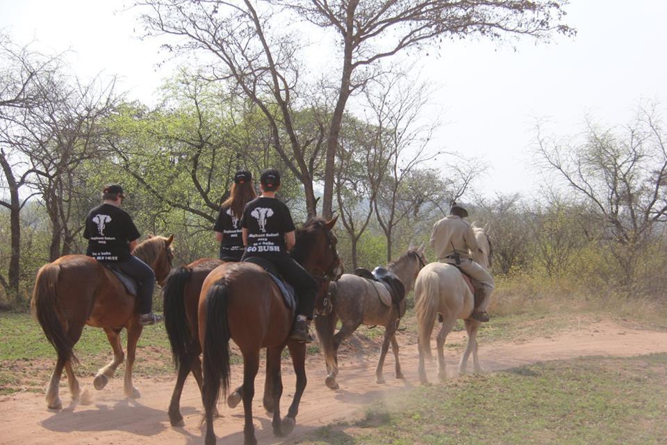 Game viewing on horseback