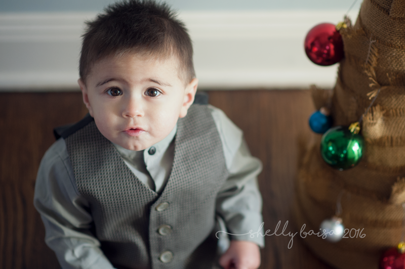Limited Edition Holiday Mini Session
