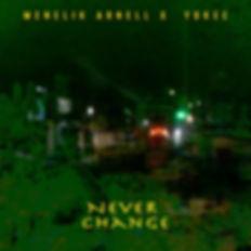NEVER CHANGE COVER copie.jpg
