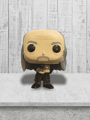 Funko  Harry Potter  Pocket Filch