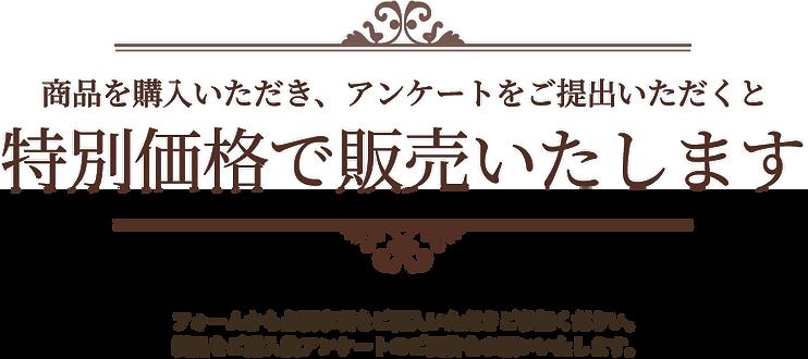展示会LP-美容-_15.png
