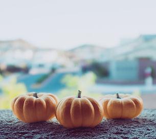 Three Pumpkins_edited_edited.jpg