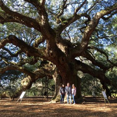 Angel Tree, John's Island, SC