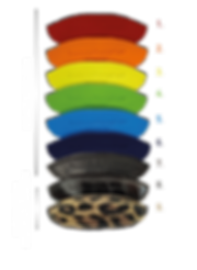 TQM20 Colori x sito.png