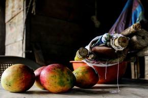 Mangoes and a just-begun weaving