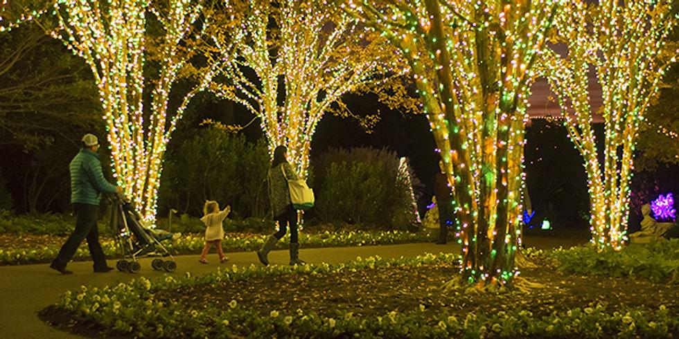 Cheekwood Holiday Lights (1)